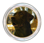 C145-Chocolate  Lab Coaster