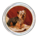 C163-Yorkshire Terrier Coaster