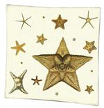 P1416-A  Starfish Decoupage Tray