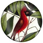 PW2703 - Cardinal Hickory Tree Paperweight