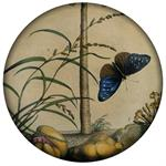 PW345-Brown Butterfly Paperweight