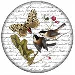 PW349 - Birds with Large Butterfly Paperweight