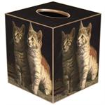 TB2613 - Two Kittens Tissue Box Cover