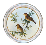 C152 - Two Birds Personalized Coaster