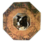 P413-Border Collie  Decoupage Plate