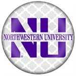 Northwestern University Paperweights