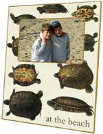 F1439 - Turtles Picture Frame
