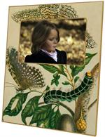 F404- Butterfly & Caterpillar Plain Picture Frame