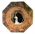 P1599-Black and White King Charles Spaniel