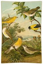 P197 - Yellow Birds Decoupage Tray