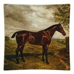 P221-SQ Horse Decoupage Tray
