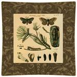 P2427-Brown Butterfly Decoupage Plate