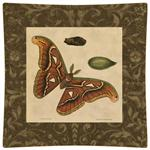 P2429-Brown Butterfly Decoupage Plate