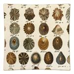 P587 - Brown Shells Decoupage Plate