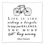 P8252-Life is like riding a bicycle..Albert Einstein Quote Decoupage Plate