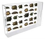 T1439 - Turtles Lucite Tray
