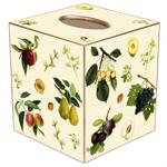 TB1413-Fruit on Creme Tissue Box Cover