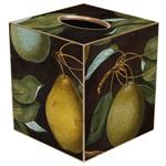 TB1549-Pears on Antique Brown Tissue Cover Box