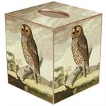 TB8266-Tawny Owl Tissue Box Cover