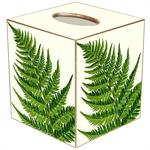 TB8639-Ferns on Ivory Tissue Box Cover