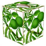 TB8888-Limes on White Tissue Box Cove