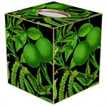 TB8889-Limes on Black Tissue Box Cover
