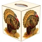 Thanksgiving Tissue Box Cover