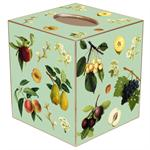 TB1433-Fruit on Aqua Tissue Box Cover